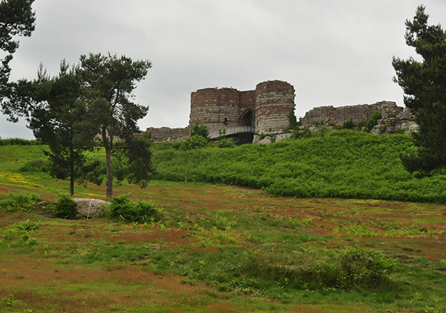 Beeston Castle 1